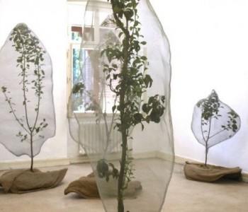 """Barbaras forest"", audiovisuelle Installation"